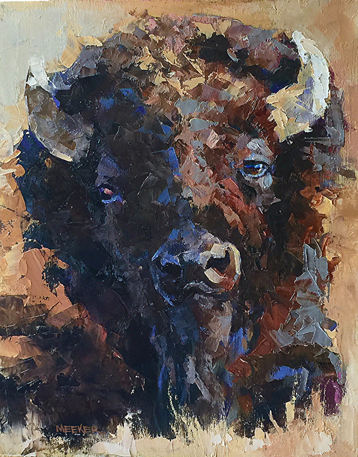 bison 8 x 10